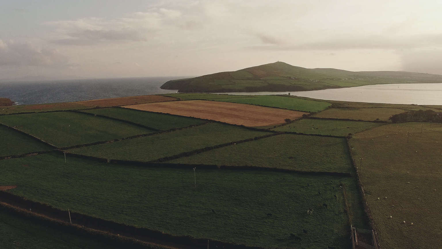 Dingle view at the coast